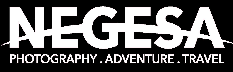 Negesa - logo-02